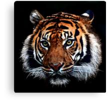Magnificent Beast Canvas Print