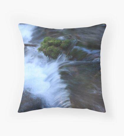Jack Spring Throw Pillow