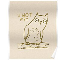 Confused Owl Poster