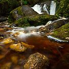 Franklin Gordon Wild Rivers National Park - Tasmania  by ShaneBooth