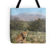 Inverdoorn- South Africa Tote Bag