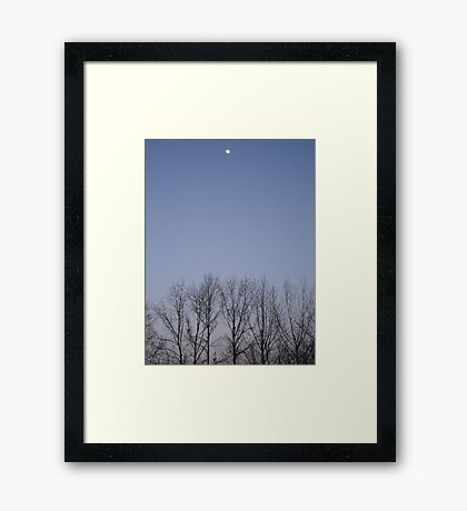 Bare Trees and a Three-quarter Moon Framed Print
