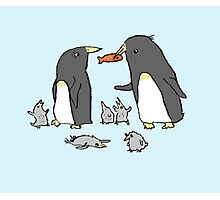 Penguin Family Photographic Print