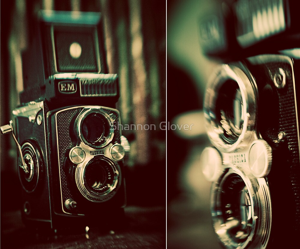 vintage fascination by Shannon Holm
