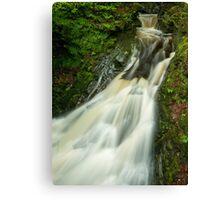 Rain Pool Canvas Print