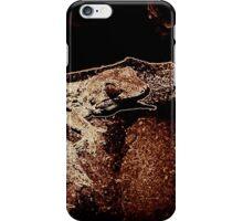 Big eyed lizard on the rocks iPhone Case/Skin