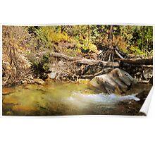Little Cottonwood Creek, Utah Poster
