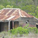Rural Homestead Wants Some Love by 4spotmore
