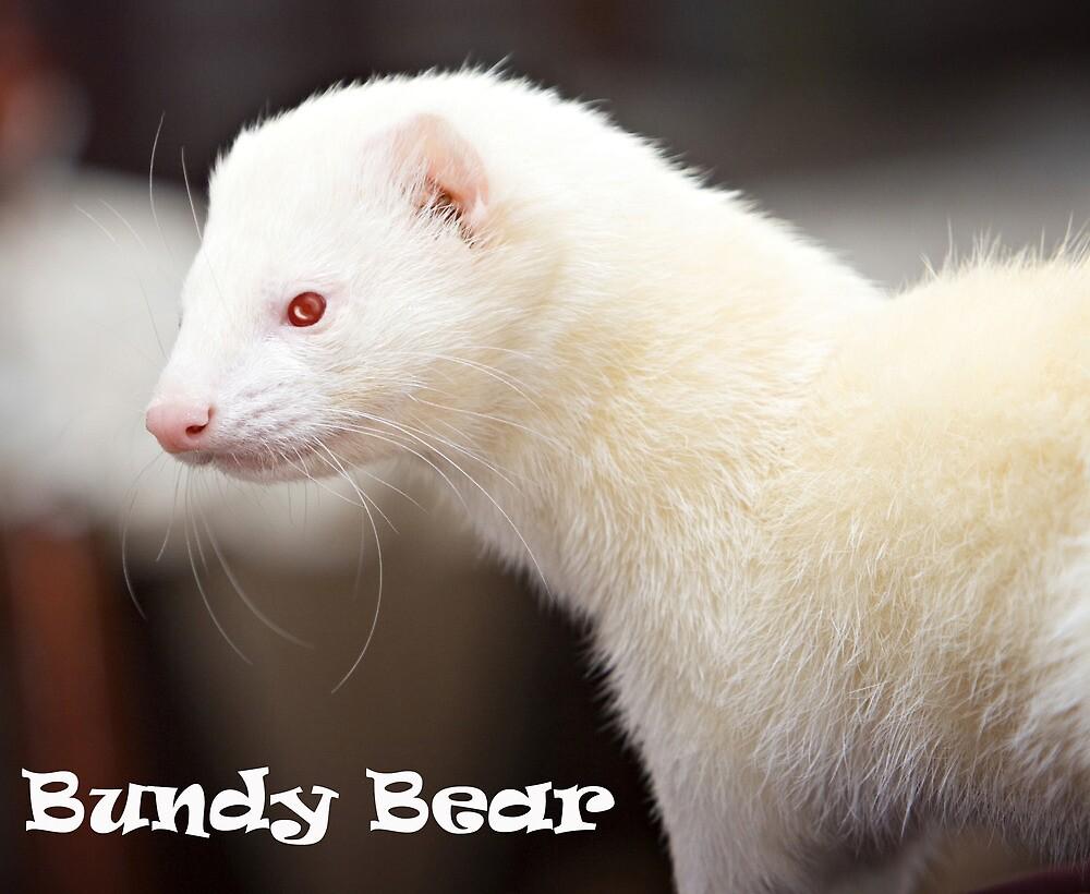 R.I.P. Bundy Bear, 30-01-10 by TubularBelle