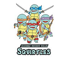 Teenage Mutant Ninja Squirtles Photographic Print