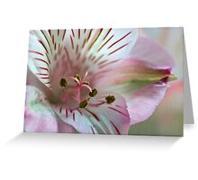 Lily the Pink Greeting Card