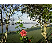 View of the Misty Macleay River. Photographic Print