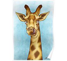 Silly Giraffe Poster