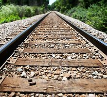Down the Tracks by William Fehr