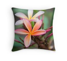 Mothers Love Them Throw Pillow