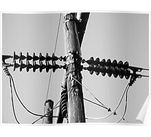 Black and White telephone Pole Poster
