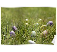 Easter eggs hiding in the grass Poster