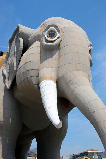 LUCY the ELEPHANT by djphoto