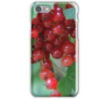 Redcurrant Close Up iPhone Case/Skin