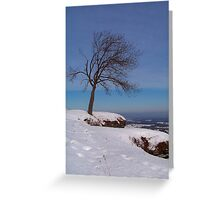 Alone In The Winter Wind Greeting Card