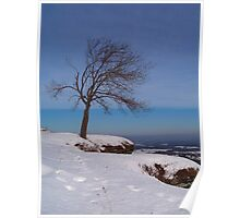 Alone In The Winter Wind Poster