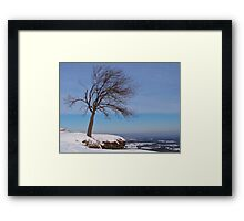 Alone In The Winter Wind Framed Print