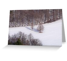 Winter in the Catskills Greeting Card