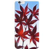 Red Maple iPhone Case/Skin