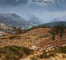 Snowstorm Over Borrowdale by David Lewins