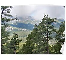 Mountains in Custer State Park Poster