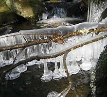 Mountain Stream Ice 4 by maxy