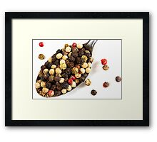 OnePhotoPerDay series: 030 by L. Framed Print