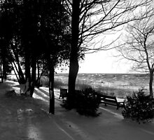 Black and White Lake by Greta  McLaughlin
