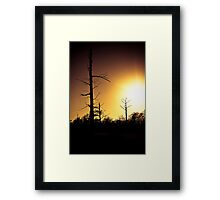 Cypress Sunset Framed Print
