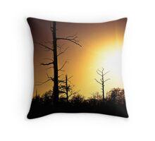 Cypress Sunset Throw Pillow