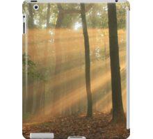 Summer Rays iPad Case/Skin