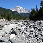 Mount Rainier and the glacier runoff - Sunrise Park Road  by LowLightImages