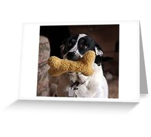 Play With Me - Please! Greeting Card