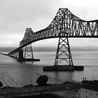 Astoria-Megler Bridge - Oregon by Barbara Burkhardt