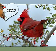 Cardinal Valentine by Bonnie T.  Barry