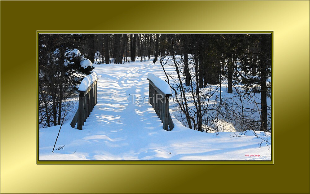 Footbridge to the Lake in Park Voyageur (framed for wall art/prints) by TerriRiver