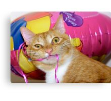 """""""Cat With Balloon"""" Canvas Print"""