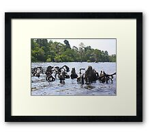 Mother Earth Framed Print