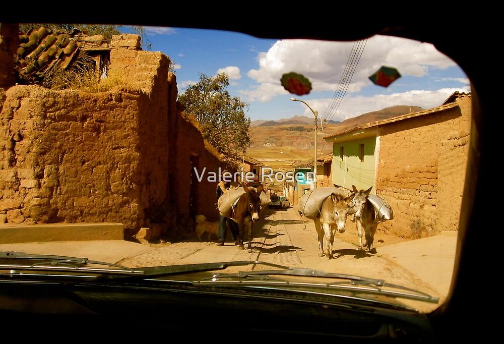 Donkey Power by Valerie Rosen