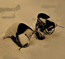 Tired Old Pair Of Jumpboots by Andreas Mueller