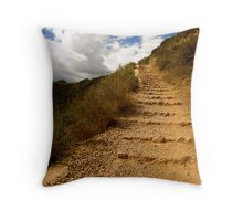 One Step at a Time Throw Pillow