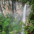 Springbrook Waterfalls by Michael Dearden
