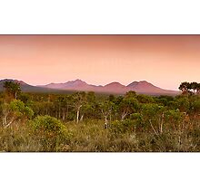 Stirling Ranges Sunrise by Kirk  Hille