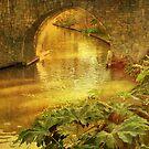 Golden Promise by Sviatlana