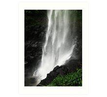 Springbrook Waterfall Art Print
